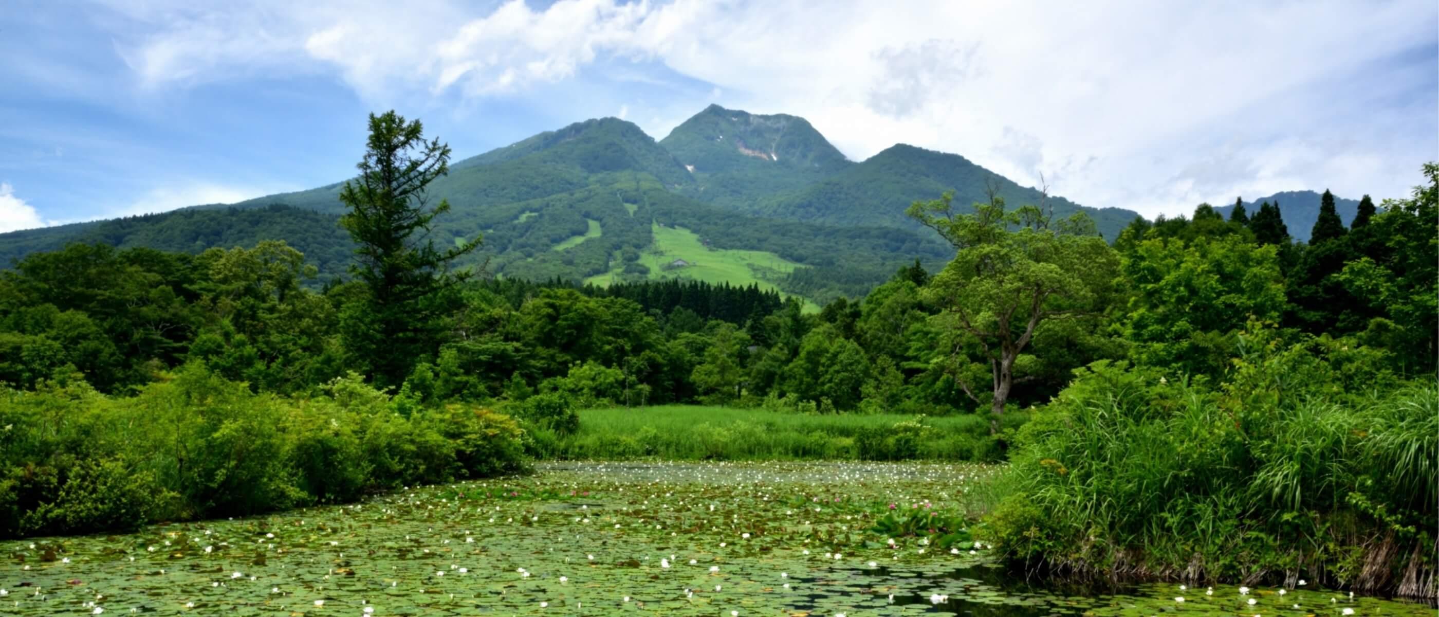 自然豊かな妙高高原で心も身体も癒される